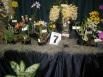 Gympie Display 2012