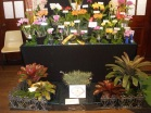 Gympie Display